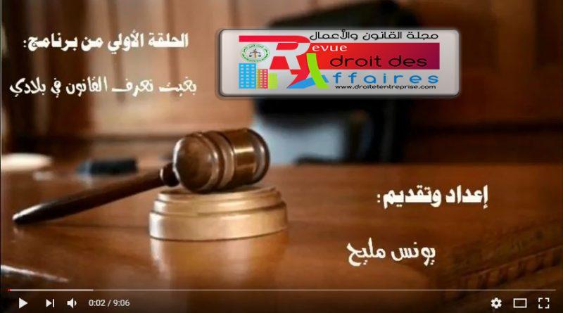 كبسولات قانونية : الدستور المغربي لسنة 2011 – الحلقة الأولى